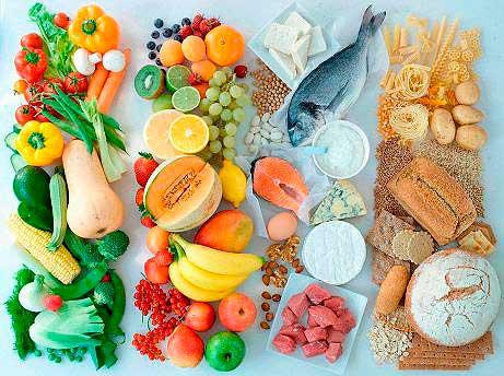 основы рационального питания и здоровый образ жизни
